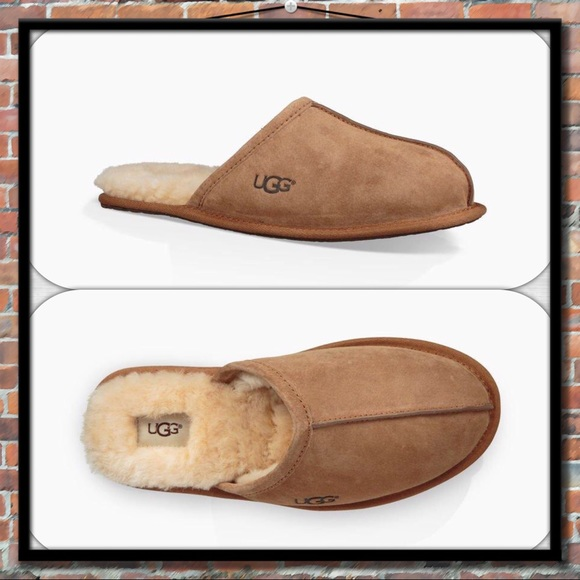d6b726415 UGG Shoes | Mens Scuff Slippers In Chestnut | Poshmark